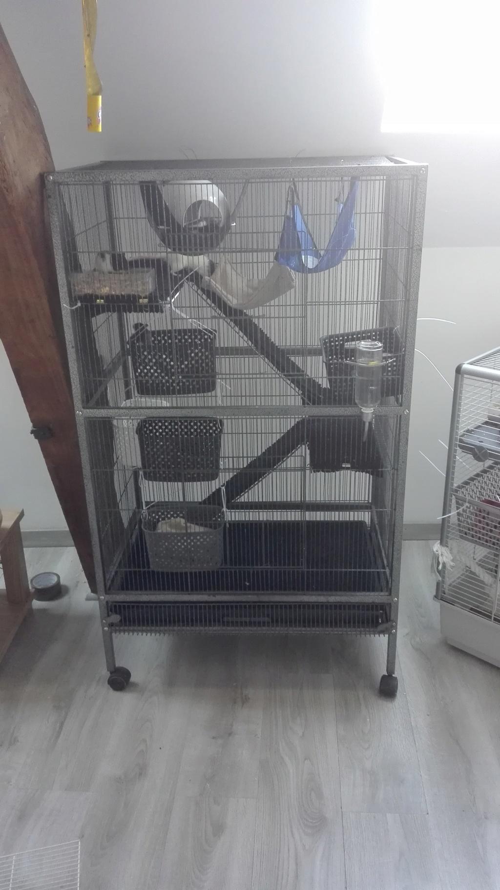 Mais quelle est cette cage ?  Cage11