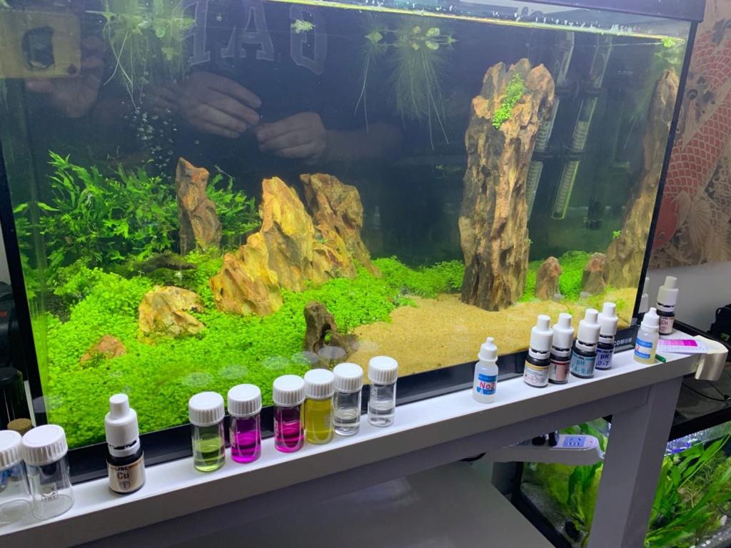 Projet#1 - 80l aquascape crevettes ?  Aquasc10