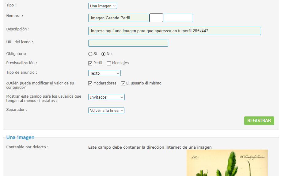Mover imagen personal a otra columna en profile_view_body Prueba10