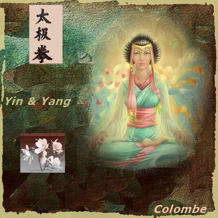 Alphabet animé Y / Yin et Yang Diane-21