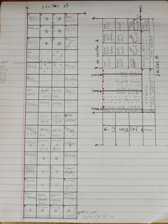 New Raised bed plans. P_202024