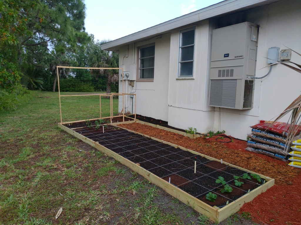 New Raised bed plans. P_202025