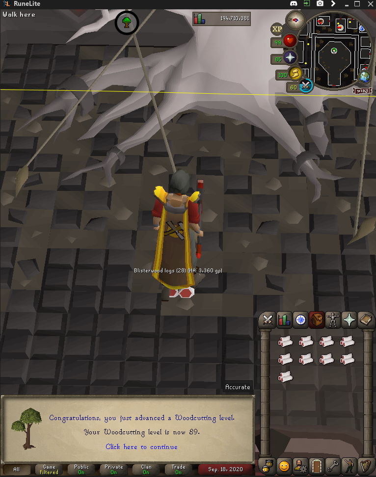 Tinn's Road to Max Cheese Cape [2272/2277] - Page 5 89_wc10