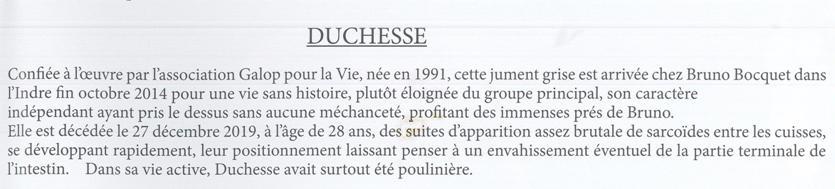 DUCHESSE - OI née en 1991 - accueillie en octobre 2014 chez Pech-Petit - Page 6 Duches10