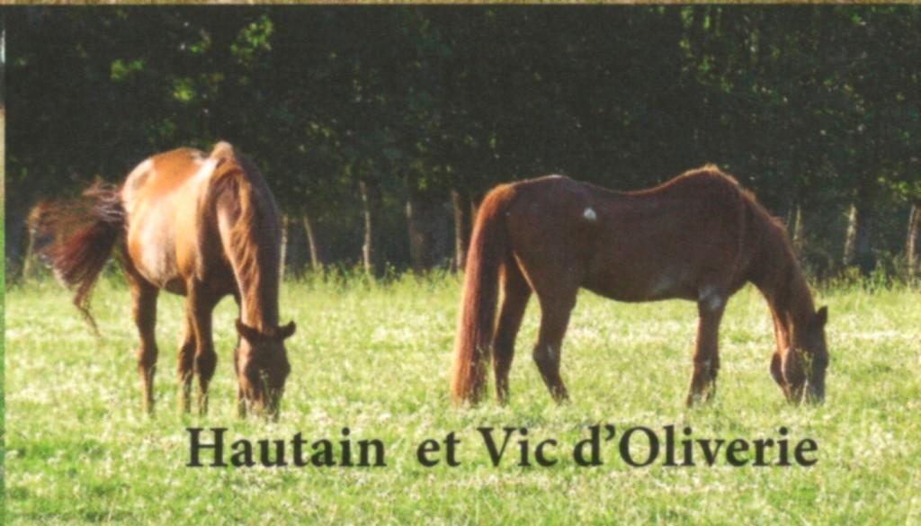 HAUTAIN : une action conjointe GPLV / Pech-Petit  Hautai10