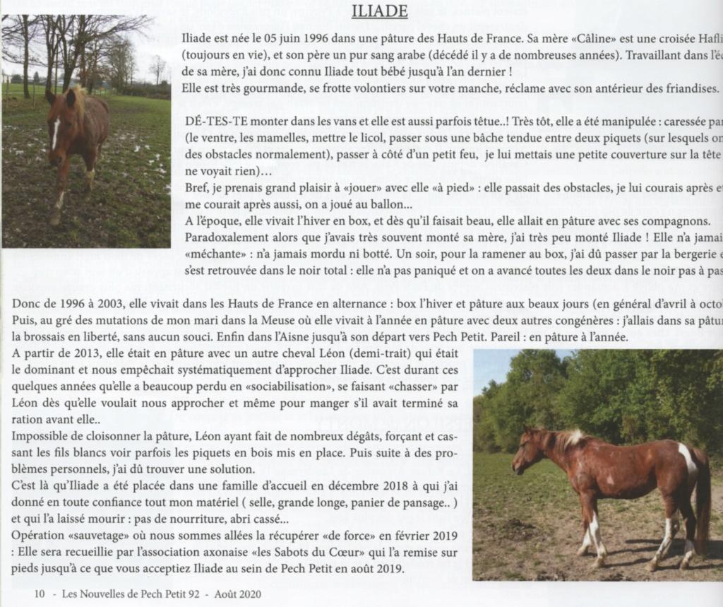 ILIADE –  ONC SELLE née en 1996 – accueillie chez Pech-Petit en août 2019 Illiad11