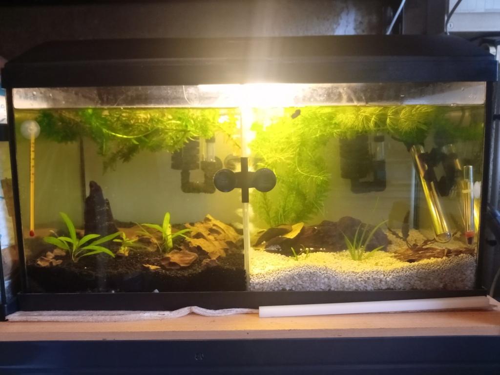 54 litres separé Img_2012