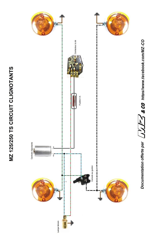 Circuit de clignotants absent Circui11