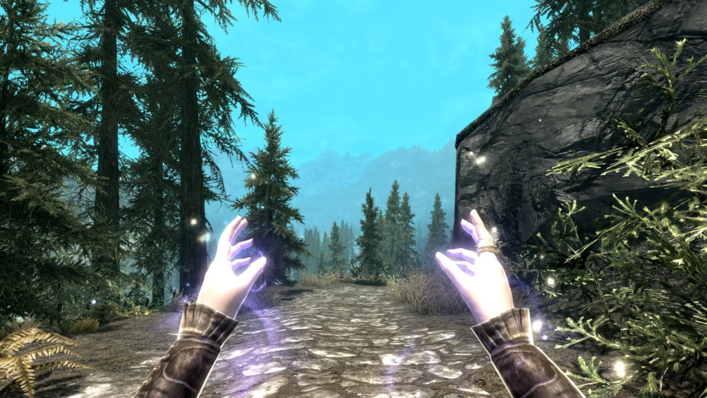 I tested SR4.0.0 and I see some graphic issues. Skyrim11