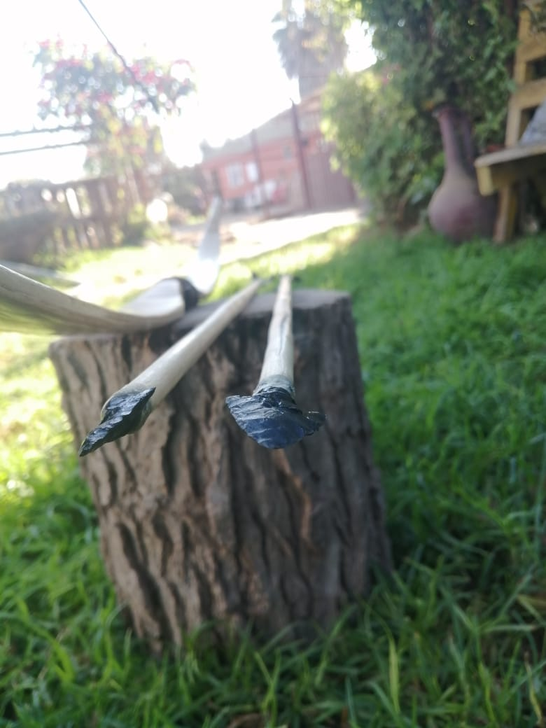 Flechas de ciruelo 4073c710