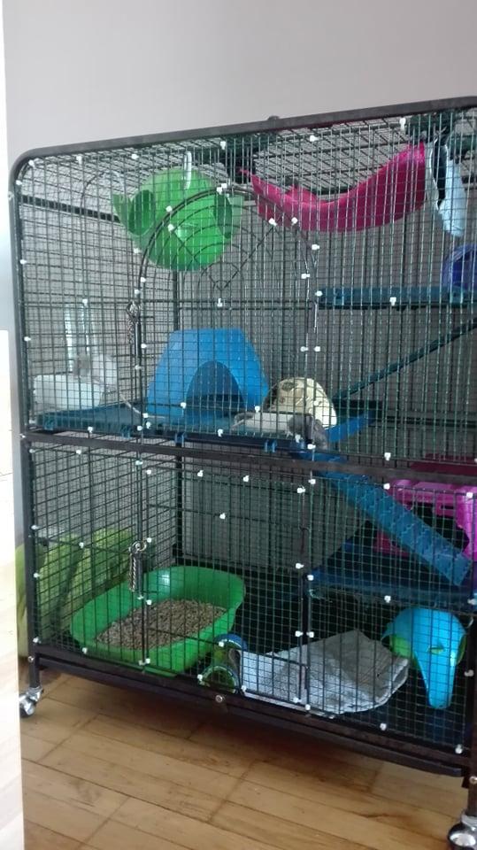 Vente cage 94 21835510