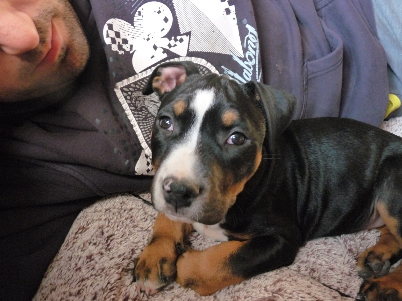 A adopter : Freezbee P1030612