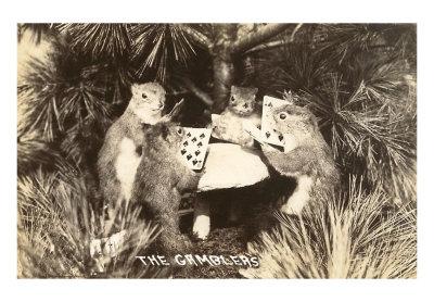 Aimez-vous les écureuils Acureu10