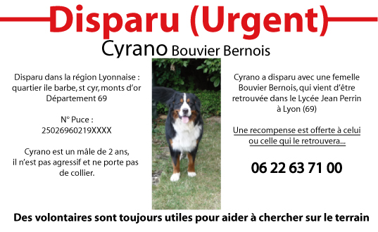 [retrouvée Enghoon]Disparition de 2 B. Bernois à Lyon - Page 4 22_03_11