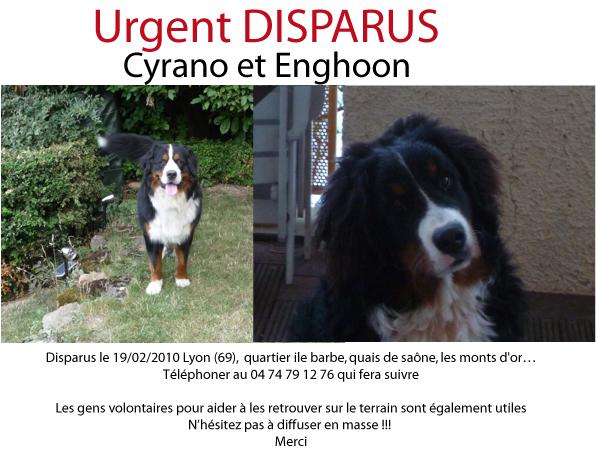 [retrouvée Enghoon]Disparition de 2 B. Bernois à Lyon - Page 2 Image012