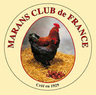 FORUM DU MARANS-CLUB DE FRANCE