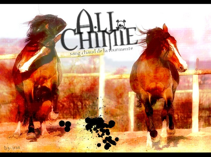 BOX DE ALL-CHIMIE 2009_a10