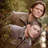 Icons Via Internet [SN Only] - Page 10 Spn-su25