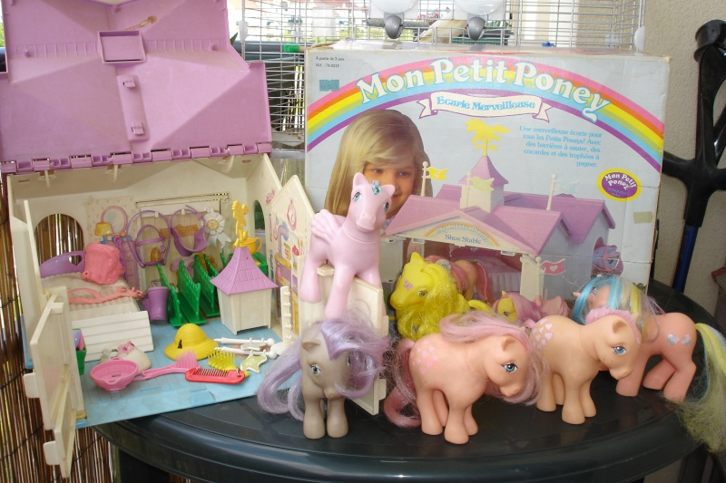 [PHOTOS] restaurations de poneys, barbie .......      (new mission p35) Dsc05919