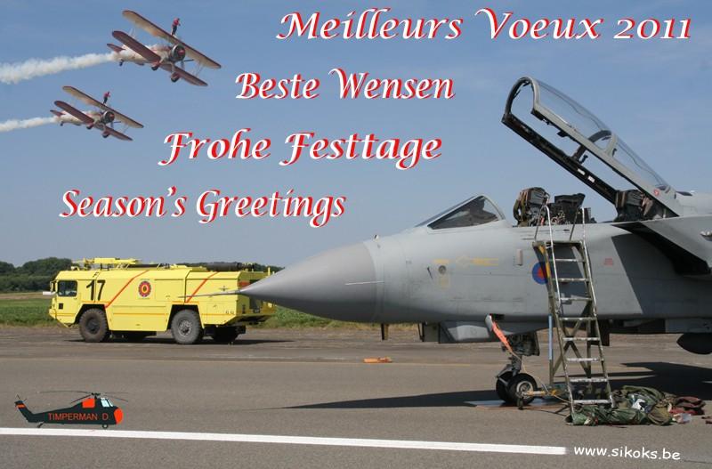 Bonnes Fêtes et Meilleurs Vœux pour 2011 - Page 4 Voeux_11
