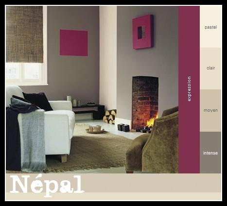 Aide pour choisir les couleurs de mon séjour Nepal12