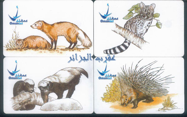 Oman: Animaux Divers Om110