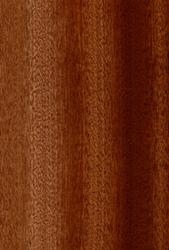 Que pensez-vous de ces bois pour sculpter ? - Page 2 Sapell10