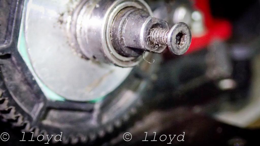 LOSI Mini 8ight T - Page 2 P7287612