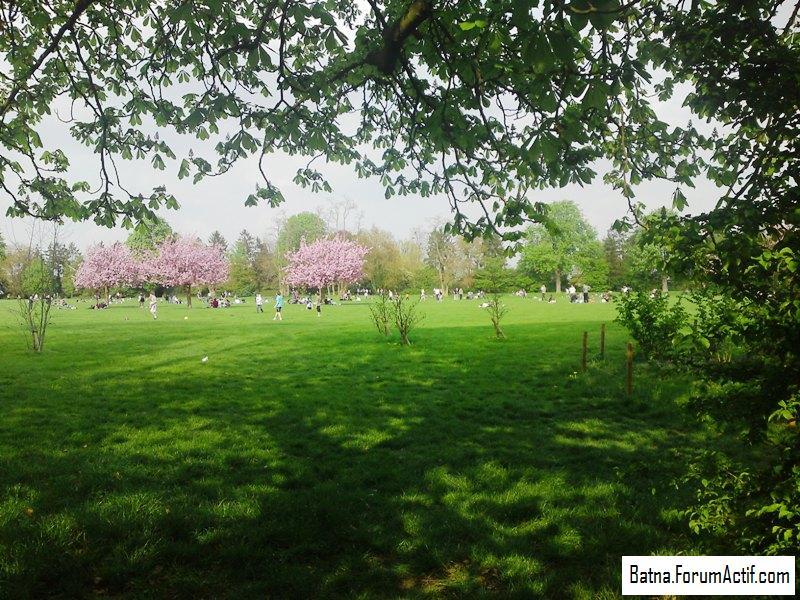 Parc de sceaux  (1) P13-0417
