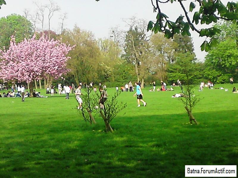 Parc de sceaux  (1) P13-0418
