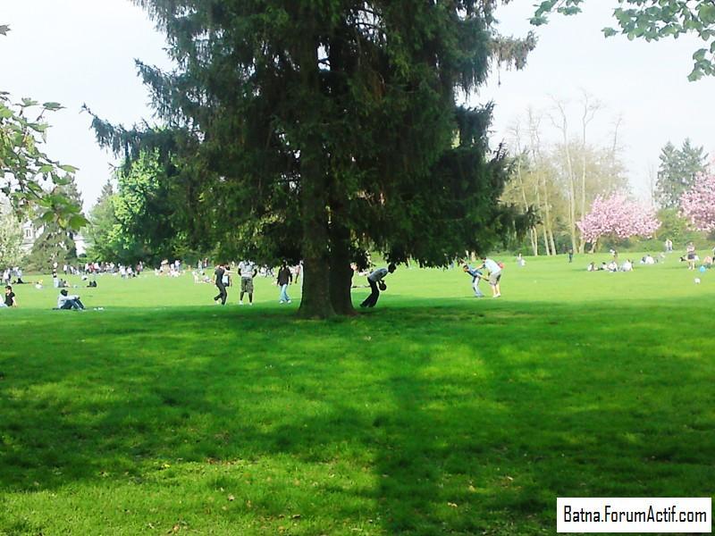 Parc de sceaux (2) P13-0419
