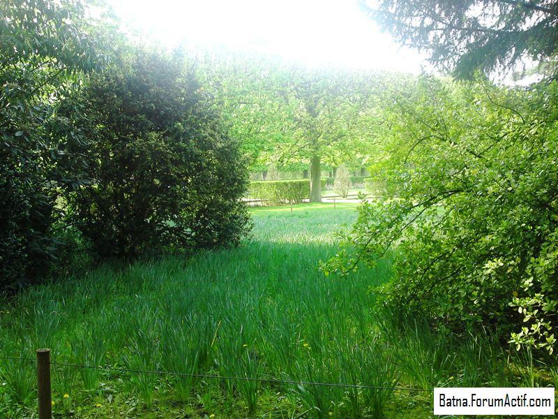 Parc de sceaux (2) P13-0424