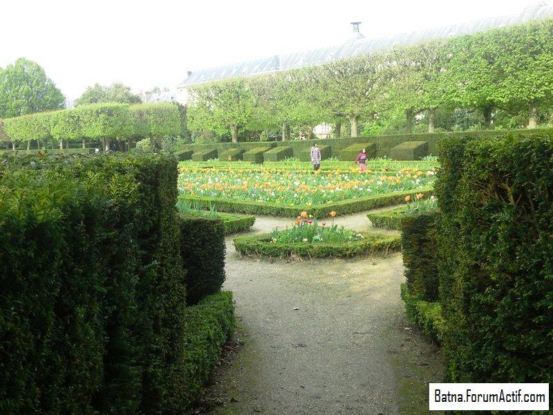 Parc de sceaux (2) P13-0425