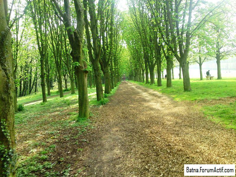 Parc de sceaux (5) P13-0452