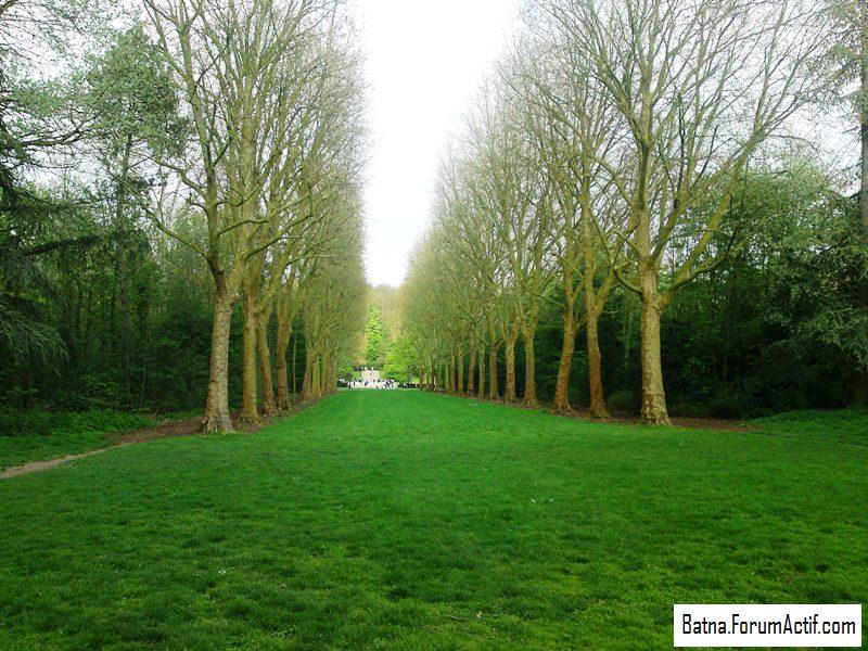 Parc de sceaux (6) P13-0461