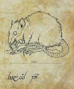 Galerie du projet Nacridan Rat-on10