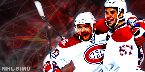 Hockey Cage