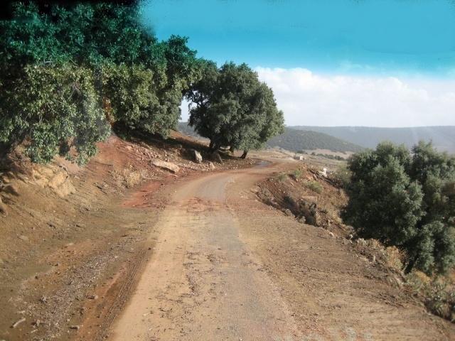 Les environs de Meknès 1 Route_11