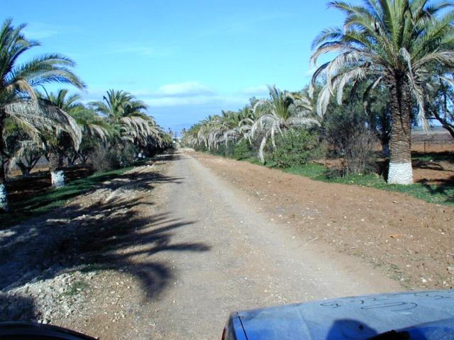 Les environs de Meknès 1 Vallae44