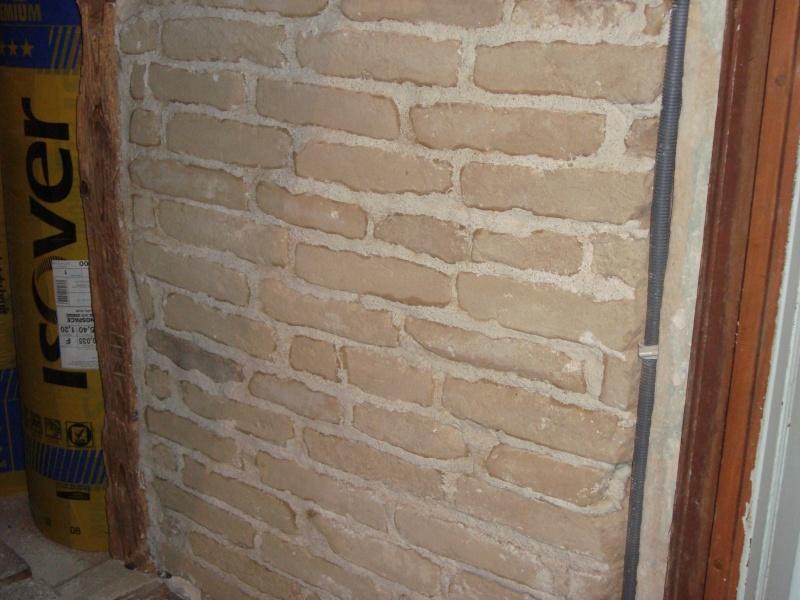 proteger mes briques en argiles !! Dsc02711