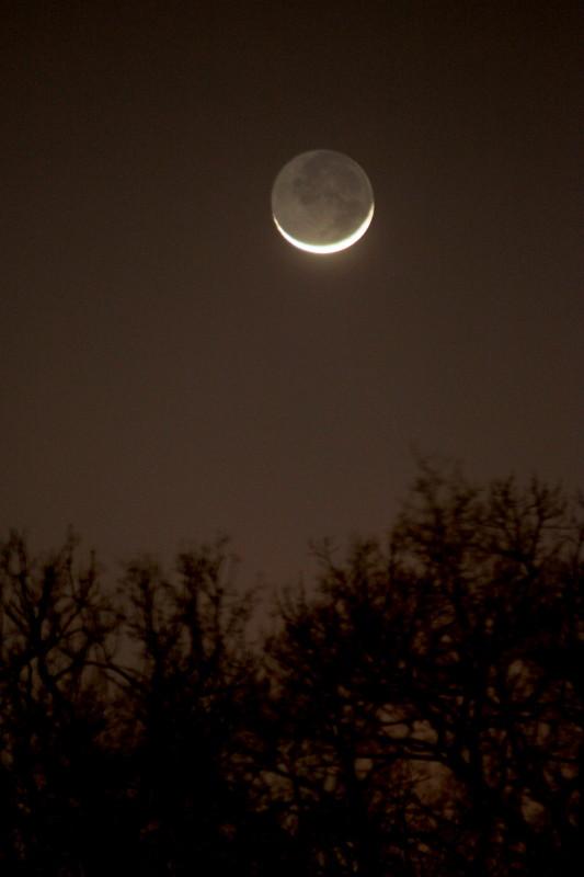 La Lune - Page 2 Img_7010