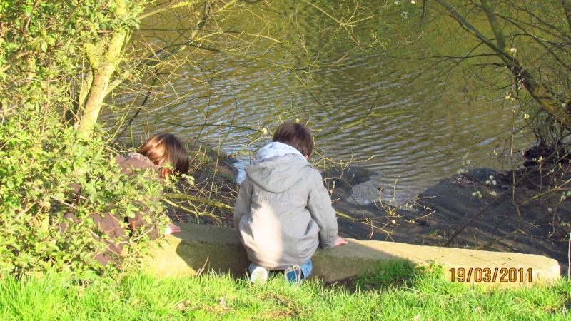 ils ont pollué, mon lac.......... - Page 2 Img_3019