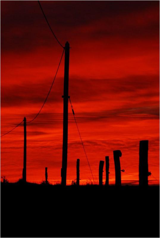 Le fil Rouge - Page 6 89256411