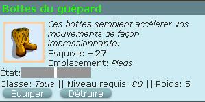 propose bottes du guépard Bottes11