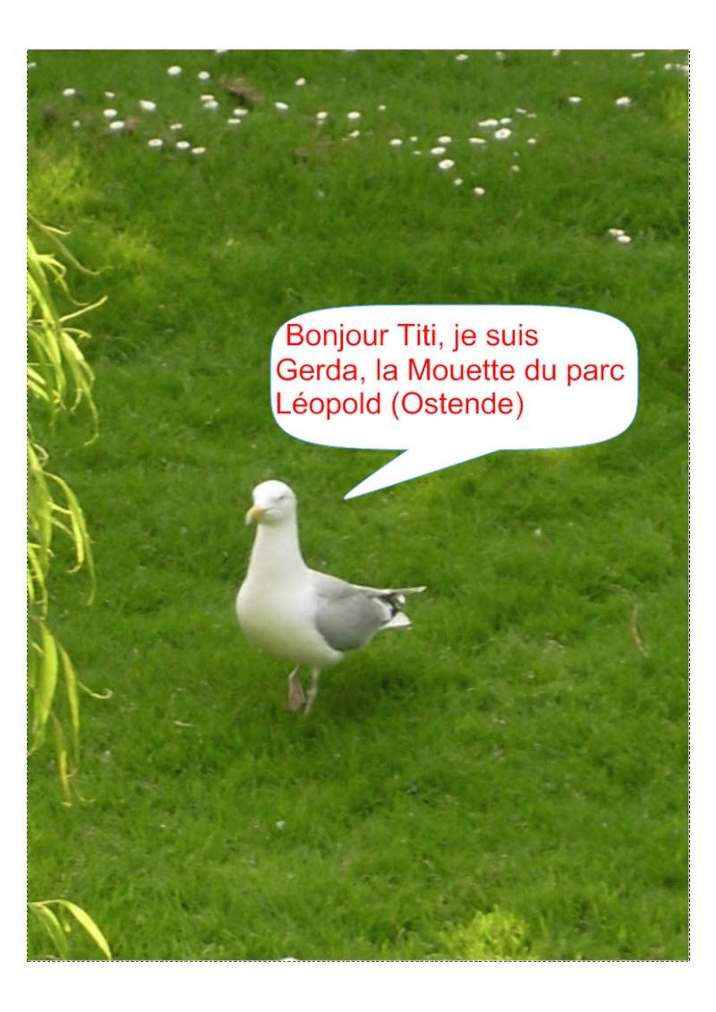 Ma retraite dans le Gers (par TITI) - Page 30 Montag10