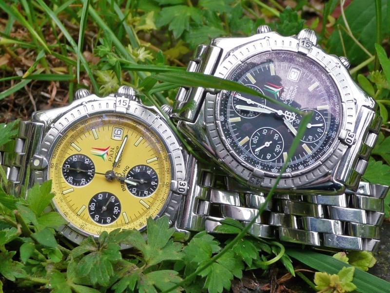 Porter des montres de modèles similaires P1050211