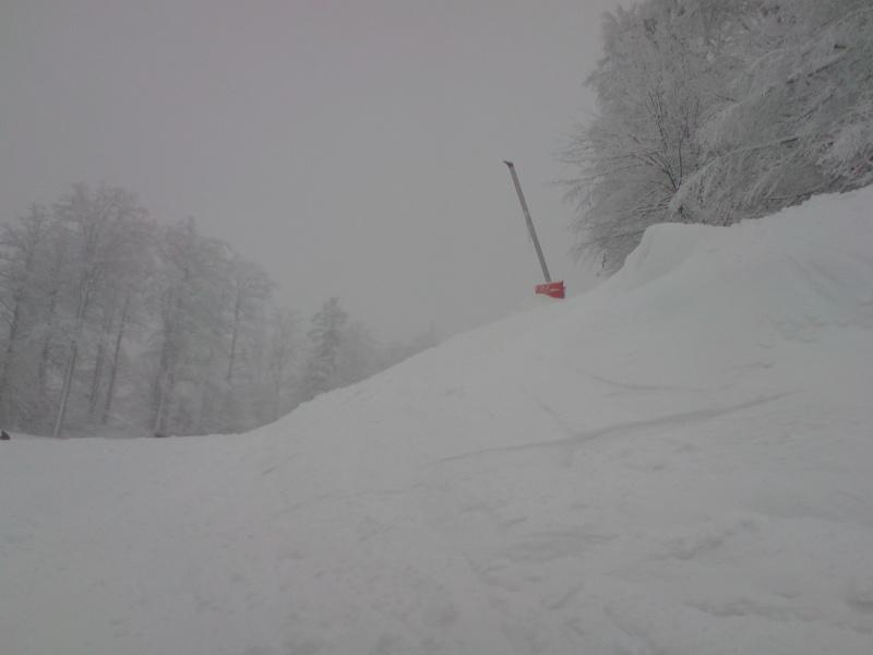 Une journée de ski à la Bresse (Vosges) P2901113