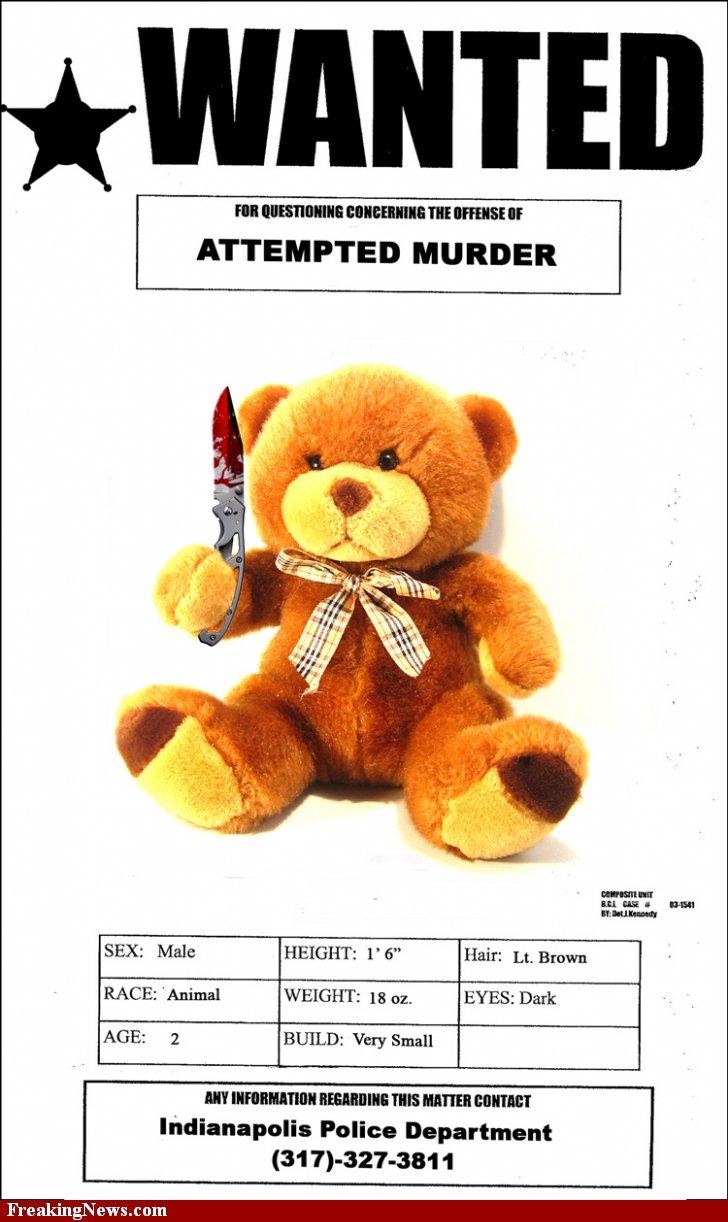 Le temps d'avant .... l'authentique .... Teddy-10