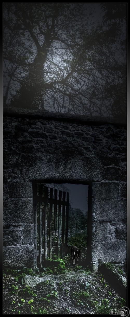 Essai jour/nuit Panor145