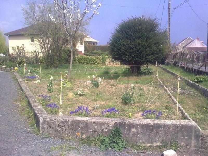 mon jardin 15042031